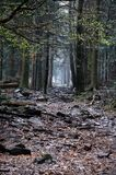 Τα βουνά Swietokrzyskie Στοκ φωτογραφίες με δικαίωμα ελεύθερης χρήσης