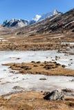 Τα βουνά witn χιονίζουν και κατωτέρω με τους τουρίστες στο έδαφος με την καφετιά χλόη, το χιόνι και την παγωμένη λίμνη το χειμώνα Στοκ εικόνα με δικαίωμα ελεύθερης χρήσης
