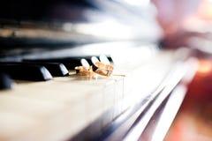 Τα γαμήλια δαχτυλίδια βρίσκονται στα κλειδιά πιάνων στοκ φωτογραφία με δικαίωμα ελεύθερης χρήσης