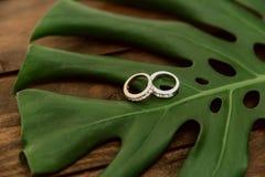 Τα γαμήλια δαχτυλίδια βρίσκονται στο τροπικό φύλλο monstera στοκ φωτογραφίες