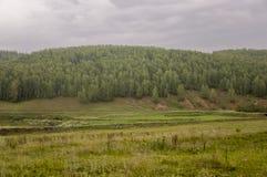 Τα γκρίζα σύννεφα στον πρόωρο ουρανό φθινοπώρου πέρα από τους πράσινους τομείς, τα δέντρα, τα δάση και τα τεράστια βουνά κλείνουν Στοκ Φωτογραφία