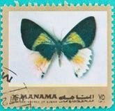 Τα γραμματόσημα ήταν τυπωμένων στα Ηνωμένα Αραβικά Εμιράτα Στοκ Εικόνα