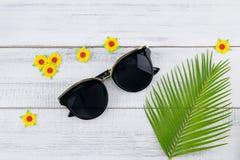 Τα γυαλιά ηλίου διακοσμούν με τα φύλλα φτερών Στοκ Εικόνες