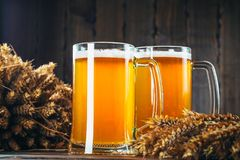 τα γυαλιά μπύρας ανάβουν δύο Στοκ φωτογραφία με δικαίωμα ελεύθερης χρήσης