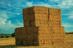 Τα δέματα σανού συσσώρευσαν επάνω στον τομέα σε ένα αγρόκτημα στοκ φωτογραφία με δικαίωμα ελεύθερης χρήσης