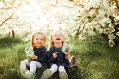 Τα δίδυμα έχουν τη διασκέδαση στο πάρκο Στοκ Εικόνες