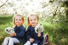 Τα δίδυμα έχουν τη διασκέδαση στο πάρκο Στοκ φωτογραφία με δικαίωμα ελεύθερης χρήσης