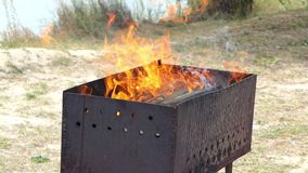 Τα δίκρανα της φλόγας αυξάνουν από έναν ορειχαλκουργό μετάλλων σε ένα Riverbank με Bulrush στην slo-Mo απόθεμα βίντεο