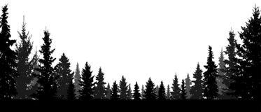 Τα δασικά, κωνοφόρα δέντρα, σκιαγραφούν το διανυσματικό υπόβαθρο διανυσματική απεικόνιση