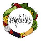 Τα διανυσματικά εικονίδια λαχανικών θέτουν σε ένα ύφος κινούμενων σχεδίων που συσσωρεύεται σε ένα στρογγυλό στεφάνι Αγροτικό προϊ Στοκ εικόνα με δικαίωμα ελεύθερης χρήσης