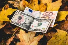Τα δολάρια και τα ευρώ βρίσκονται σε ένα κίτρινο πεσμένο φύλλο φθινοπώρου, έννοια Στοκ Εικόνες