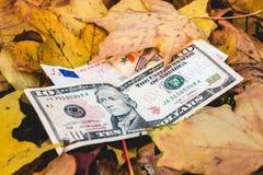 Τα δολάρια και τα ευρώ βρίσκονται σε ένα κίτρινο πεσμένο φύλλο φθινοπώρου στοκ εικόνα με δικαίωμα ελεύθερης χρήσης