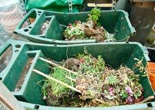 τα δοχεία λιπαίνουν τον ξηρό κήπο λουλουδιών Στοκ Φωτογραφίες