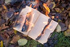 Τα εγκαύματα βιβλίων στοκ φωτογραφία
