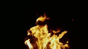 Τα εγκαύματα πυρκαγιάς στο σκοτάδι απόθεμα βίντεο