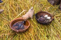 Τα επιπλέοντα νησιά στη λίμνη Titicaca Puno, Περού, Νότια Αμερική, το σπίτι Η πυκνή ρίζα που φυτεύει Khili αναμειγνύει Στοκ εικόνα με δικαίωμα ελεύθερης χρήσης