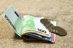 Τα ευρο- νομίσματα και τα τραπεζογραμμάτια χρημάτων που συσσωρεύονται το ένα στο άλλο μέσα Στοκ Εικόνες