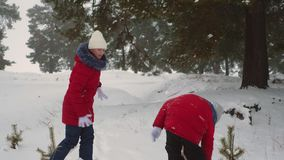 Τα ευτυχή κορίτσια εφήβων παίζουν τις χιονιές στο δασικό παιχνίδι παιδιών πεύκων με το χιόνι στο πάρκο zimy Διακοπές Χριστουγέννω απόθεμα βίντεο