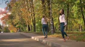 Τα ευχάριστα θηλυκά καυκάσιων ξανθά και Brunette είναι ζωηρός χορός χορού συγχρονικά στο μονοπάτι, πράσινο πάρκο πίσω, ηλιόλουστο φιλμ μικρού μήκους