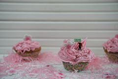 Τα εύγευστα ρόδινα cupcakes διακόσμησαν με ένα μικροσκοπικό ειδώλιο προσώπων κρατώντας ένα σημάδι με τις λέξεις γειά σου της άνοι Στοκ φωτογραφία με δικαίωμα ελεύθερης χρήσης