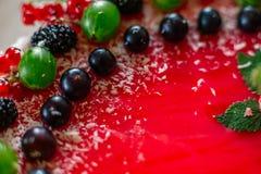 Τα εύγευστα υγιή χορτοφάγα τρόφιμα, δεν ψήνουν cheesecake φραουλών, που διακοσμείται με τα φρέσκα κόκκινα μούρα και την πράσινη μ Στοκ Εικόνες