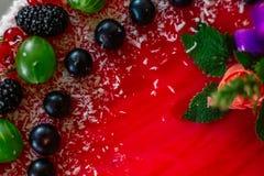 Τα εύγευστα υγιή χορτοφάγα τρόφιμα, δεν ψήνουν cheesecake φραουλών, που διακοσμείται με τα φρέσκα κόκκινα μούρα και την πράσινη μ Στοκ Φωτογραφίες