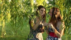 Τα ελκυστικά νέα κορίτσια μιλούν ο ένας στον άλλο στο πάρκο απόθεμα βίντεο