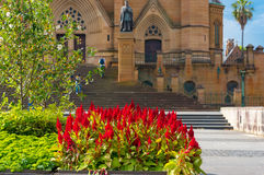 Τα ζωηρόχρωμα κόκκινα λουλούδια επάνω κοντά στον καθεδρικό ναό του ST Mary s Στοκ Φωτογραφία