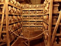 Τα ζωικά κλουβιά μέσα στο αντίγραφο κιβωτών του Νώε ` s στην κιβωτό αντιμετωπίζουν στοκ εικόνα