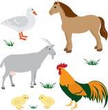 Τα ζώα αγροκτημάτων θέτουν 2 Στοκ Εικόνες