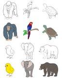 τα ζώα θέτουν έξι Διανυσματική απεικόνιση