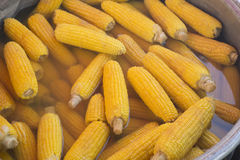 Τα δημητριακά έβρασαν υπαίθρια στο καζάνι μετάλλων Φυτικά γεύματα Cookout Φρέσκο οργανικό, υγιές πρόχειρο φαγητό Στοκ φωτογραφίες με δικαίωμα ελεύθερης χρήσης