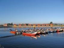 τα θαλάσσια πορτογαλι&kappa Στοκ Εικόνες