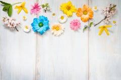 Τα θερινά λουλούδια άνοιξης στις ξύλινες αναδρομικές σανίδες αφαιρούν το floral υπόβαθρο στοκ εικόνες