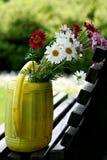 Τα θερινά λουλούδια στο πότισμα μπορούν στοκ εικόνα