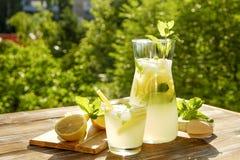 Τα θερινά υγιή μη οινοπνευματώδη κοκτέιλ, εσπεριδοειδή ημπότισαν τα ποτά νερού, λεμονάδες με το λεμόνι ασβέστη ή το πορτοκάλι, πο στοκ φωτογραφίες με δικαίωμα ελεύθερης χρήσης