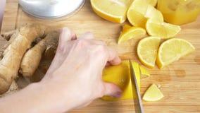 Τα θηλυκά χέρια κόβουν ένα μαχαίρι με το λεμόνι για ένα ποτό που γίνεται από τα εσπεριδοειδή χειροποίητα με τη ρίζα πιπεροριζών r απόθεμα βίντεο