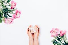 Τα θηλυκά χέρια ` s φέρνουν ένα μικρό δώρο μεταξύ του ανθίσματος peonies στοκ φωτογραφίες