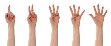 Τα θηλυκά χέρια που απομονώνονται μετρώντας στο λευκό Στοκ Φωτογραφίες