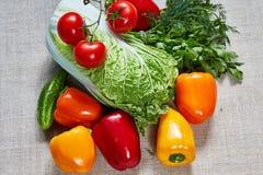 Τα διάφορα ώριμα λαχανικά και η πάπρικα γεμίζουν σε έναν καμβά Στοκ εικόνα με δικαίωμα ελεύθερης χρήσης