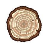 Τα διανυσματικά καφετιά δαχτυλίδια δέντρων κόβουν απομονωμένο το κορμός λευκό ελεύθερη απεικόνιση δικαιώματος