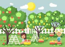Τα διανυσματικά παιδιά χαρακτηρών κινουμένων σχεδίων απεικόνισης δύο μικρά κορίτσια συγκομίζουν τον ώριμο κήπο οπωρώνων φθινοπώρο Στοκ εικόνες με δικαίωμα ελεύθερης χρήσης