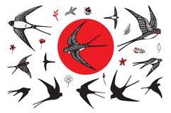 Τα ιαπωνικά καταπίνουν το σύνολο Στοκ Εικόνες