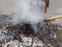 τα κάστανα Βαρβάρας βάζουν φωτιά στο ανοικτό ψήσιμο καλά Στοκ Εικόνες