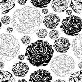 Τα κήπος-λουλούδια Peony στην άνθιση άνευ ραφής επαναλαμβάνουν το υπόβαθρο σχεδίων σε γραπτό διανυσματική απεικόνιση