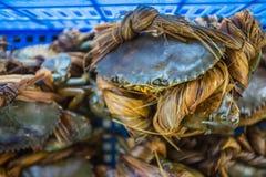 Τα καβούρια δεσμεύουν στην αγορά Στοκ εικόνες με δικαίωμα ελεύθερης χρήσης