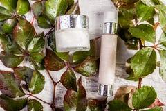 Τα καλλυντικά προϊόντα μπουκαλιών SPA στο άσπρο ξύλινο υπόβαθρο και τα πράσινα φύλλα που καλύπτονται στο γλυκό νερό μειώνονται Στοκ Φωτογραφίες