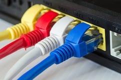 Τα καλώδια Ethernet συνδέουν με το δρομολογητή ή το διακόπτη Στοκ εικόνα με δικαίωμα ελεύθερης χρήσης