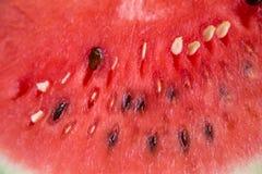 Τα καρπούζια είναι γλυκά φρούτα Στοκ Εικόνες
