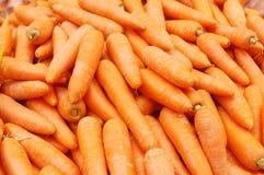 τα καρότα κλείνουν επάνω στοκ εικόνες